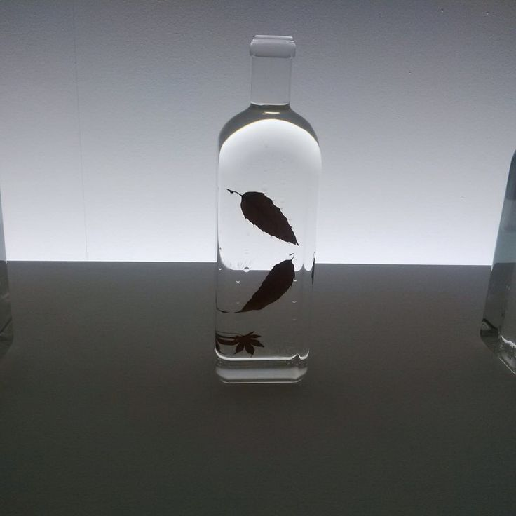 Endo Rain Bottles series