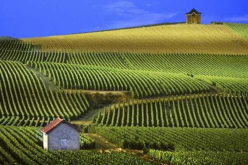 Drinking Champagne in Champagne, #France, Cathrine's Travel Bucket List