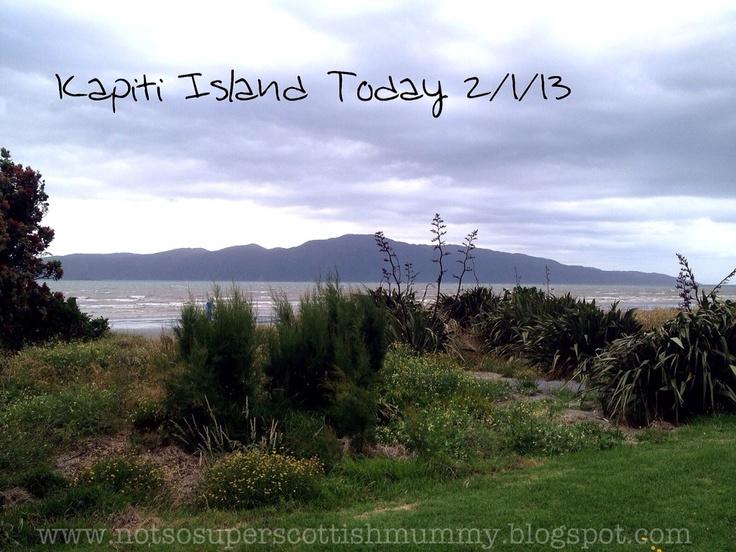 Not So Super Scottish Mummy: Kapiti Island Today 2/1/13