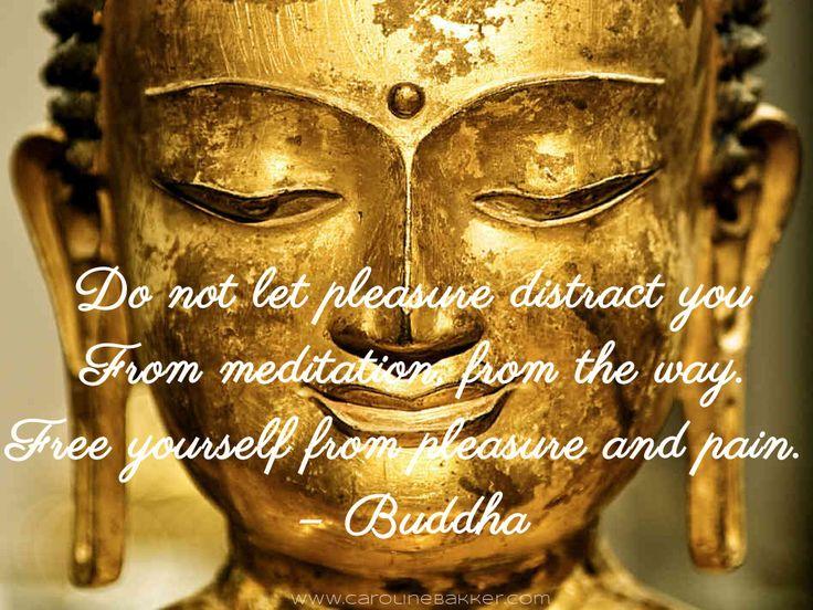 Best 25 Buddha Quotes On Karma Ideas On Pinterest: The 25+ Best Buddha Quotes On Karma Ideas On Pinterest