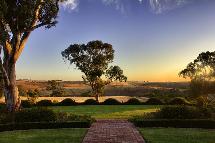 Südaustralien – das atemberaubende Barossa Valley! #australien #reisetipps #liliesdiarytravel