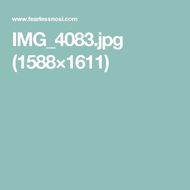 IMG_4083.jpg (1588×1611)