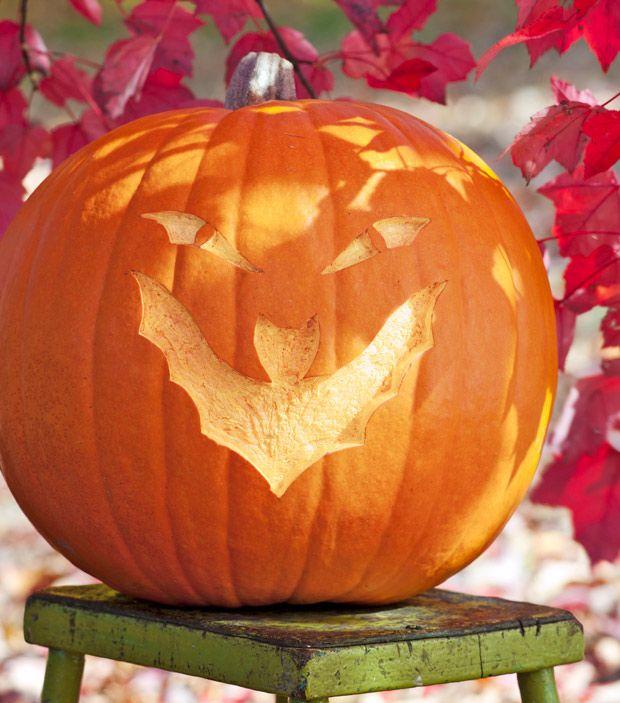 107 best pumpkin stencils for faces images on pinterest for Fall pumpkin stencils