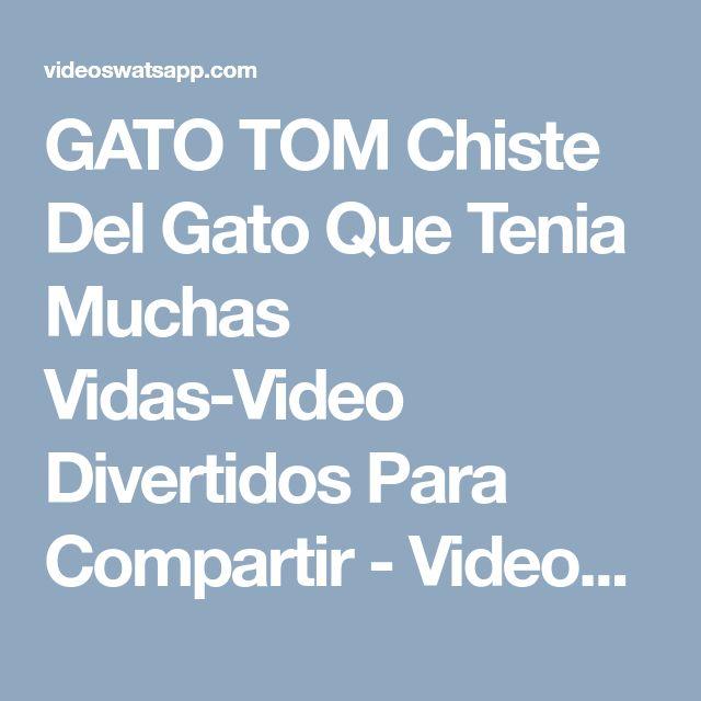 GATO TOM Chiste Del Gato Que Tenia Muchas Vidas-Video Divertidos Para Compartir - Videos Whatsapp