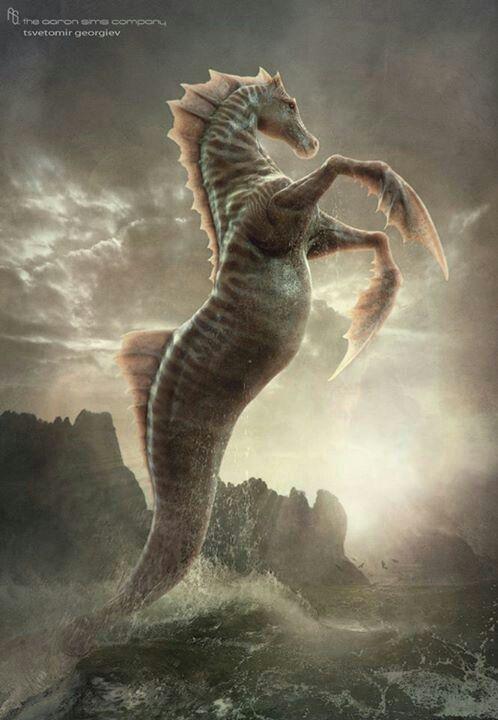 Esta criatura é uma combinação de um cavalo, e peixe, ou simplesmente um Cavalo-Marinho maior e com nadadeiras dianteiras.