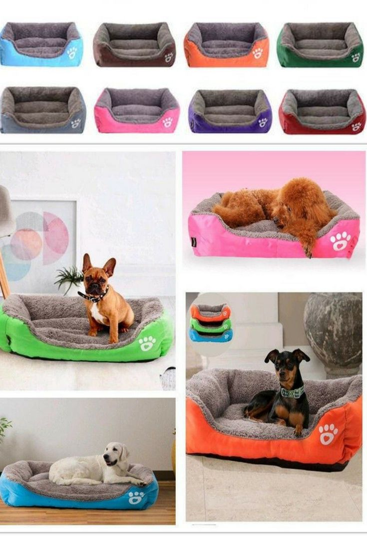 Get Your Best Friend A Comfy New Bed These Awesome Dog Beds Come In A Range Of Colors And Sizes To Make Them Perfect For An Cool Dog Beds Comfy Dog
