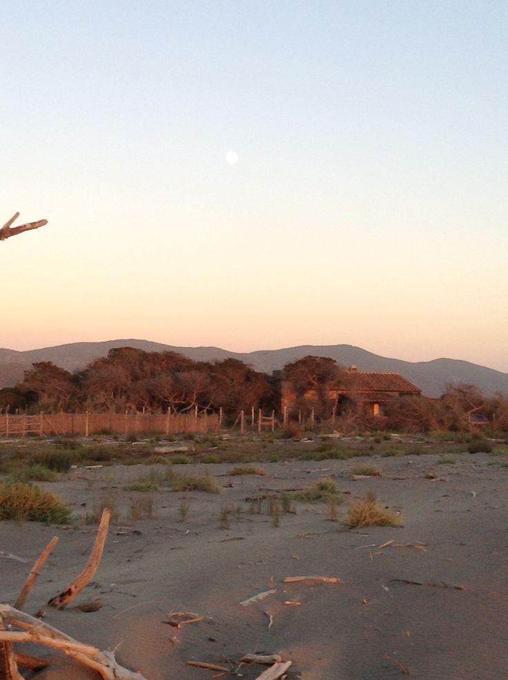 dietro il Padule i Monti dell'Uccellina