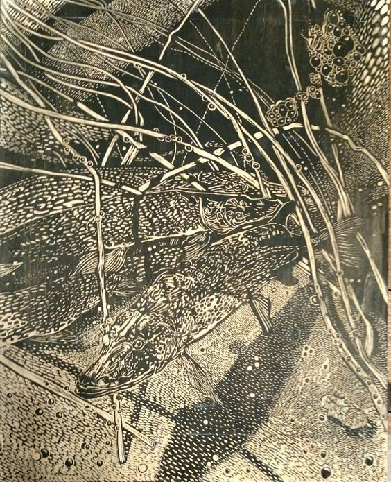 "https://flic.kr/p/DT1x7o   ""Northern Pike Spawning at Reinboldt Creek"" (block) Relief print. 2-2016.  © 2016 Erin K. Nolan  www.ErinkNolan.com:"