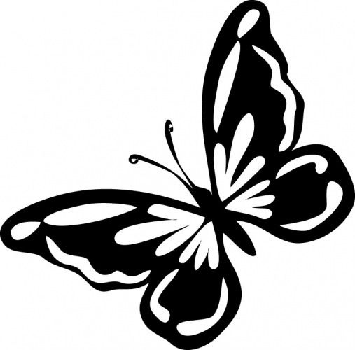 Бабочки из бумаги на стену: трафареты, шаблоны, мастер-класс