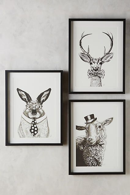 Society Animal Wall Art - anthropologie.com