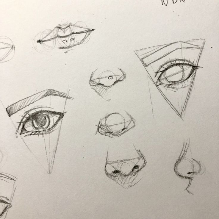 How to draw an eye, nose, lips tutorial preparation