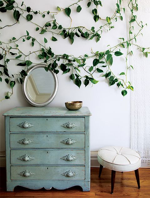 Bring the Outdoors In We stole this idea from the new book Rooted in Design, a guide to creative indoor planting from the Brooklyn- and Chicago-based garden center Sprout Home. But seriously, how cool is this indoor ivy?