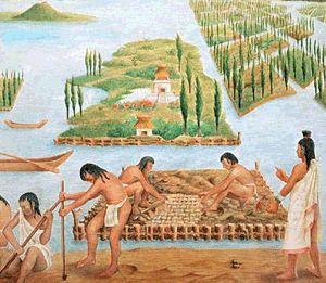 Chinampas en la antigua Tenochtitlan