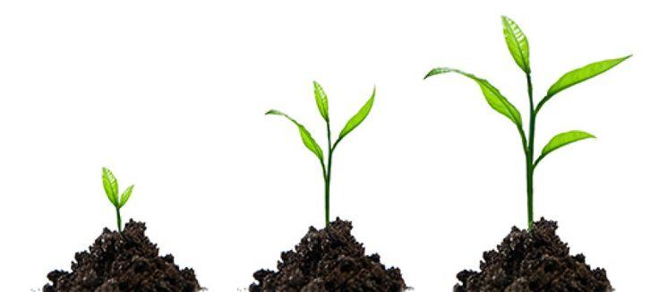 Starting To Start #sabi #index #directory #sabusinessindex #startup #startsmall #starter #growth http://www.sabusinessindex.co.za/starting-to-start/