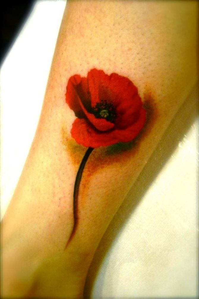 17 Small Poppy Tattoo Designs