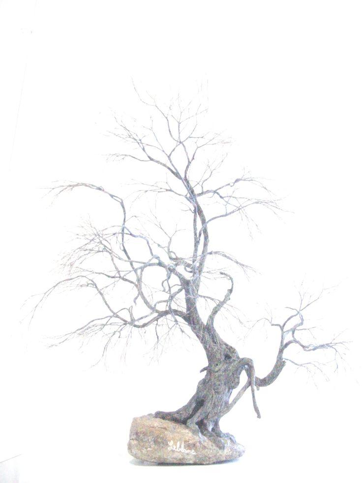 36 best bonsai