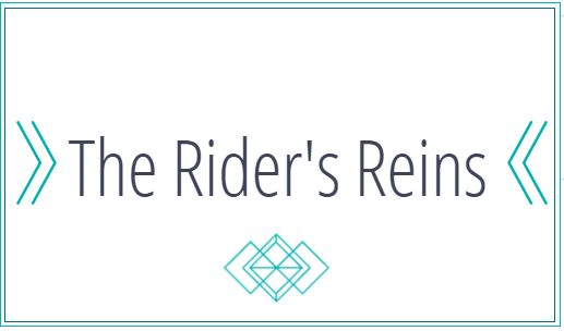 5 Things To Think About Before Getting A Horse - The Rider's Reins