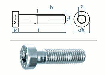 M8 x 25mm Zylinderschraube DIN7984 Stahl verzinkt 8.8 (10 Stk.)