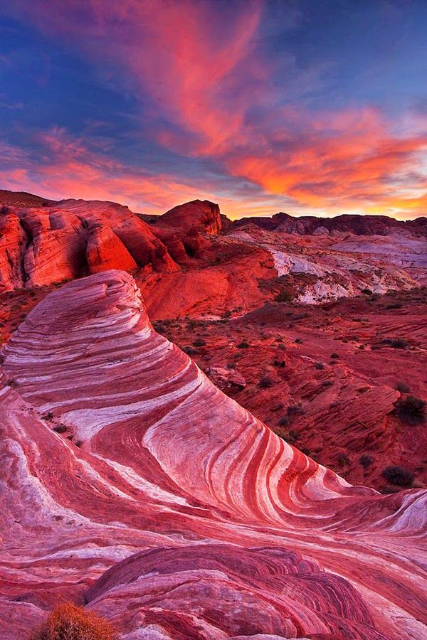 Travel Gallery: Sonoran Desert, Arizona United States