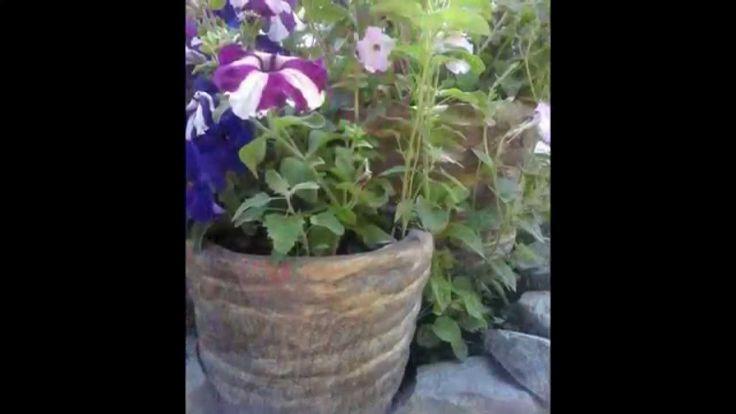 Садовые горшки из бетона мк