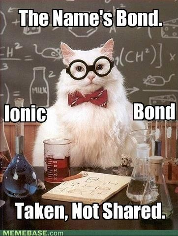 007...of chemistry: Sciencecat, Nerd Jokes, Science Jokes, Science Cat, Chemistry Humor, Chemistry Cat, Sciencejoke, Chemistry Jokes, Chemistrycat