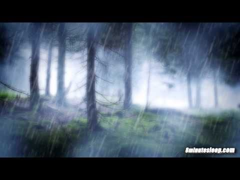 RAIN IN THE WOODS SLEEP SOUNDS | Nature's White Noise For Relaxation, Studying or Sleep | 10 Hours - YouTube