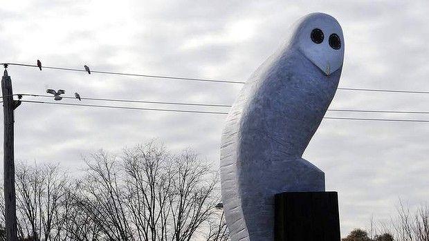 Owl Statue, Belconnen, Canberra