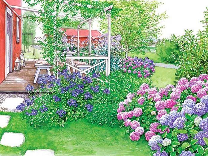 Die besten 25+ Hydrangea farben Ideen auf Pinterest Hortensien - abo mein schoner garten