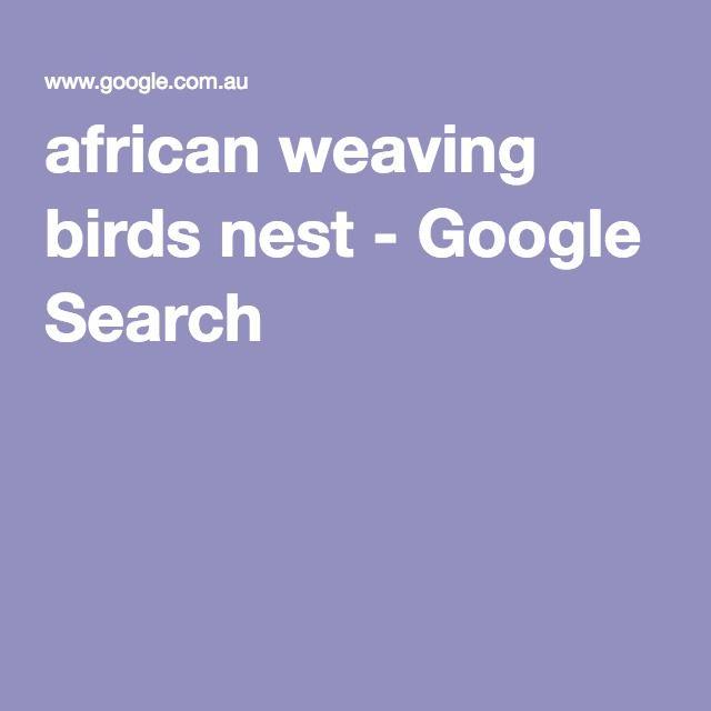 african weaving birds nest - Google Search