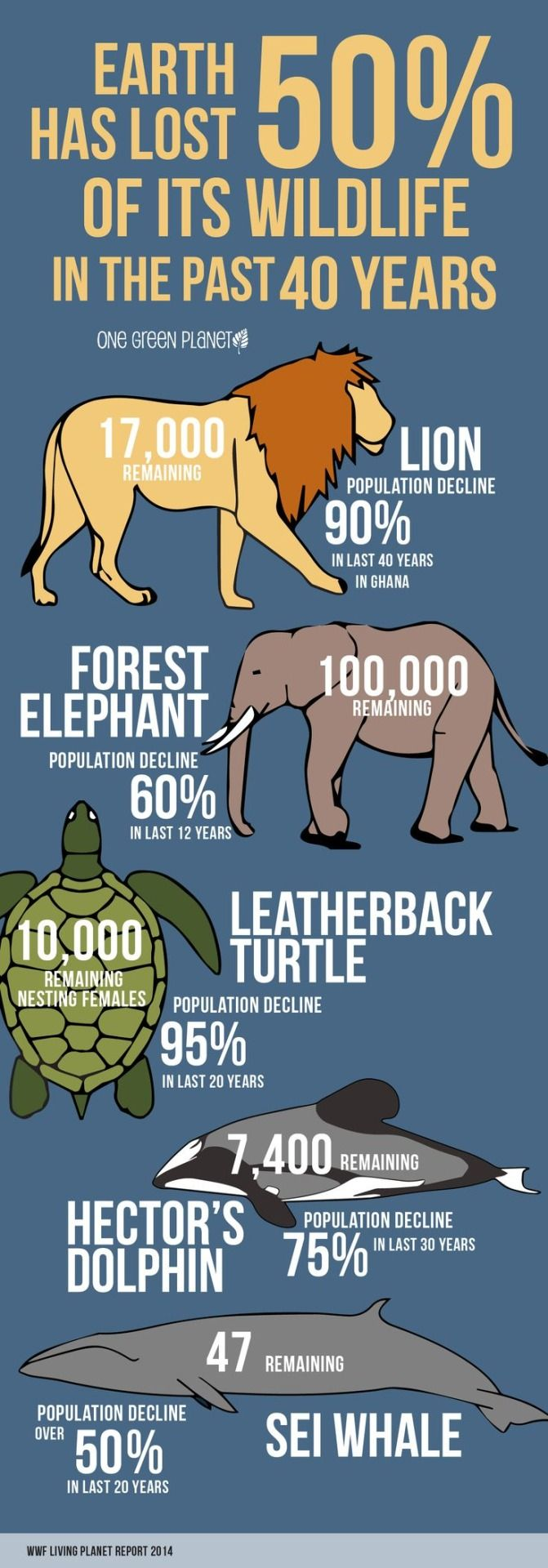 Declining animal populations >> This is why conservation is so important.