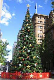 A photograph of Christmas tree in Martin Place, Sydney 2005.