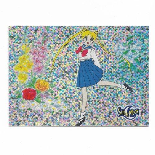 Sailor Moon Card Pretty Soldier Sailormoon  Prismatic Trading Cards Number 24 - Sailor Quiz Dart 1997 Serena