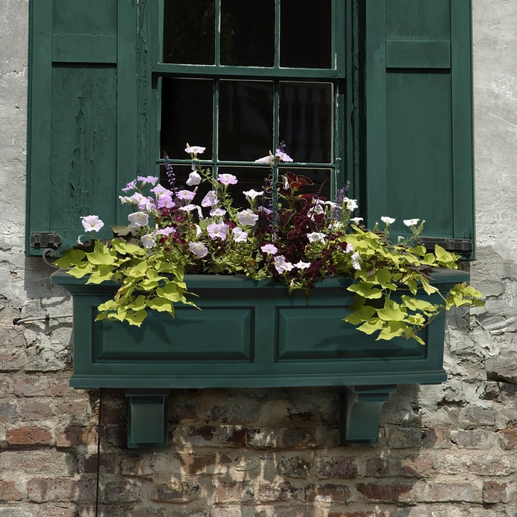 window box: White Flowers, Green Shutters, Yard Gardens, Nantucket Window, Gardens Window, Window Boxes Planters, Flowers Boxes, Hunters Green, Planters Boxes