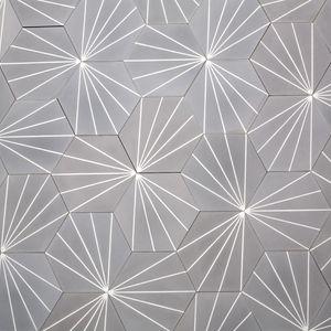 dandelion---stonegrey-82018.jpg