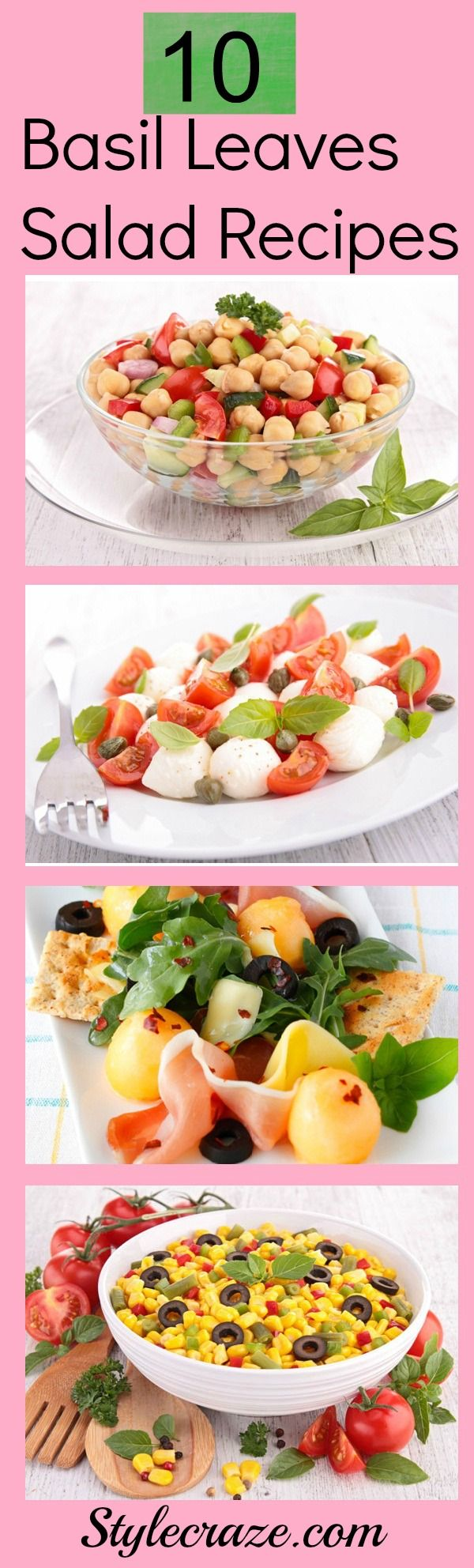 Top 10 Basil Leaves Salad Recipes You Should Try