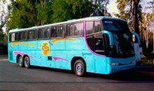 renta de autobuses en el df www.transportadoramazatl.com.mx