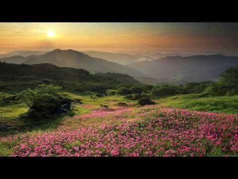 白山自然美術館 素晴らしきこの世界_Version Wide 01/Hakusan Nature Art Museum - YouTube