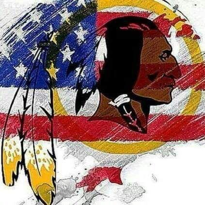 "An NFL team, the Washington Redskins, has been criticized for years for its extremely disrespectful and insensitive name. Fans and team members have tried to come to the name's defense by saying ""the name honours Indians"" which is seen as an excuse by actual natives since the name ""redskins"" refers to the massive genocides of the Native Americans that still affects people of that culture to this day."
