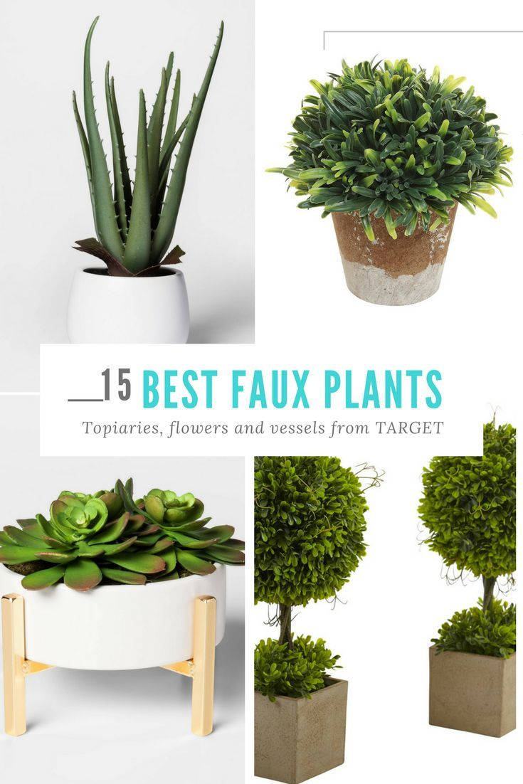 15 Best Faux Plants Topiaries Flowers And Vessels From Target