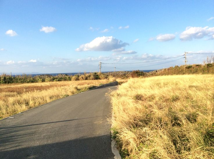 Road to sea in Yoron island