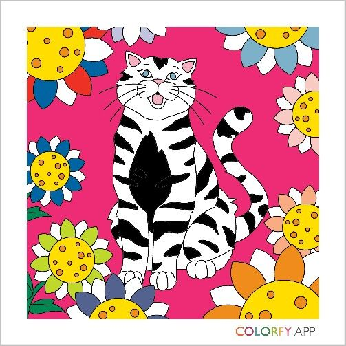 Thanks  to  Colorfy , I  have  gotten  addicted.