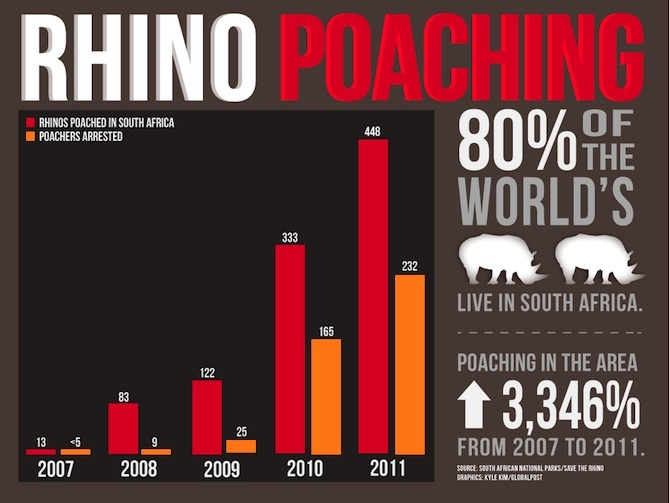 The war to save Africa's rhinoceros.