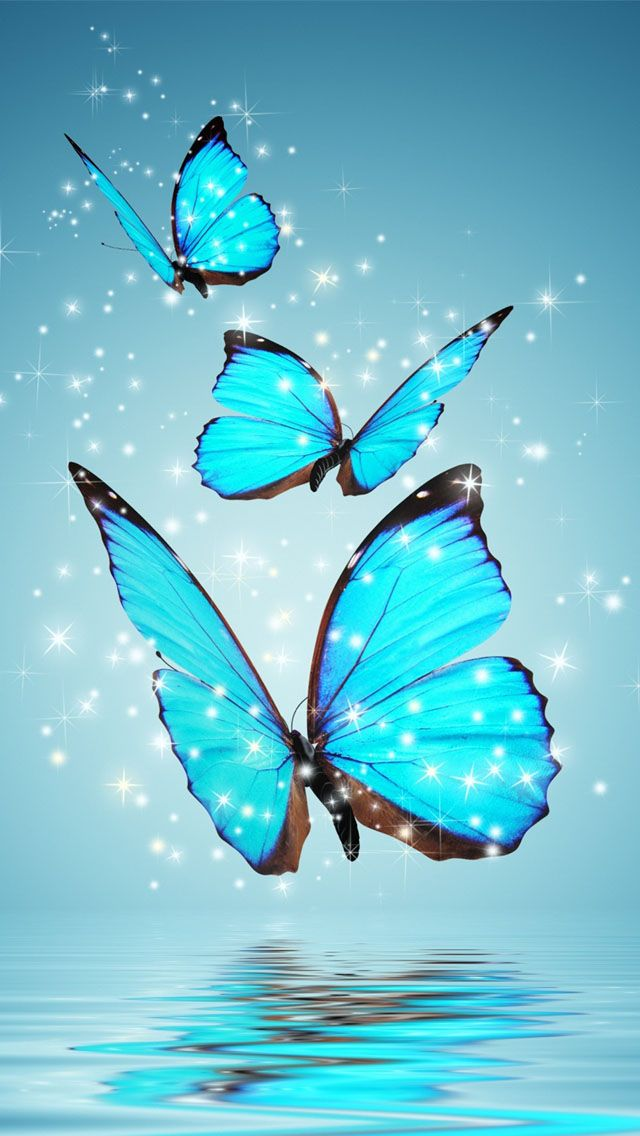 Cute Pink Phone Wallpaper 30 Colorful Butterfly Wallpapers Free To Download Blue