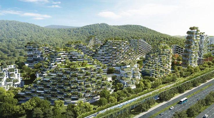 """Çin'in toplu konut projesi: Orman şehri İtalyan mimarlık firması Stefano Boeri Architetti'nin 2020 yılına kadar tamamlamayı planladığı """"sürdürülebilir şehir"""" projesi, Çin'in çevre kirliliğiyle mücadelesine yeni bir soluk getirecek gibi duruyor."""