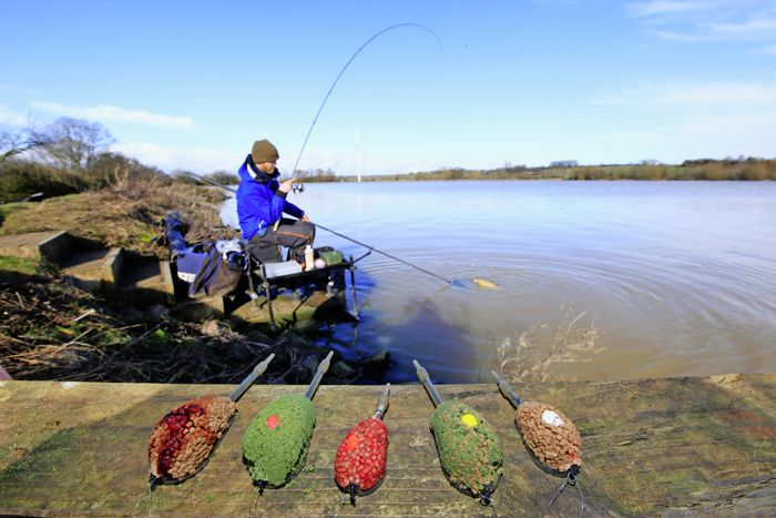 To get the best out of the flatbed feeder you need to nail the basics. Rob  Wootton answers questions on the 10 areas many anglers struggle with.  Since it first burst on to the scene in the 1990s the flatbed Method feeder  has swiftly evolved into the ultimate carp-catching device on commercial  venues.  Fishing a hookbait tucked in the middle of a frame filled with loosefeed  has helped to improve presentation, increase catch rates and make casting  tangle-free. It's one of the simplest…