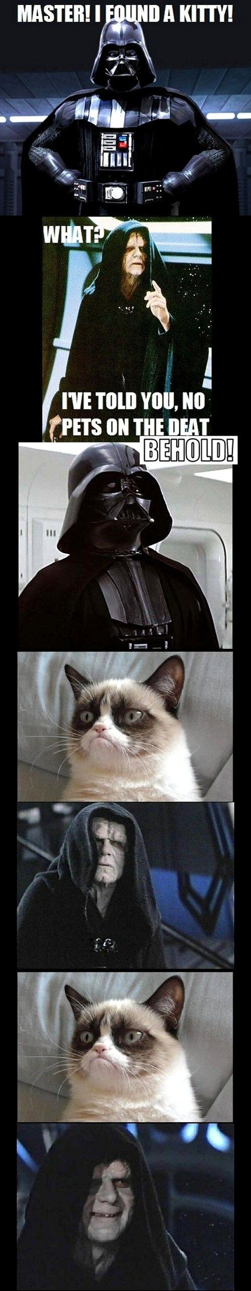 Grumpy Cat Joins the Dark Side #starwars #grumpycat #LOL