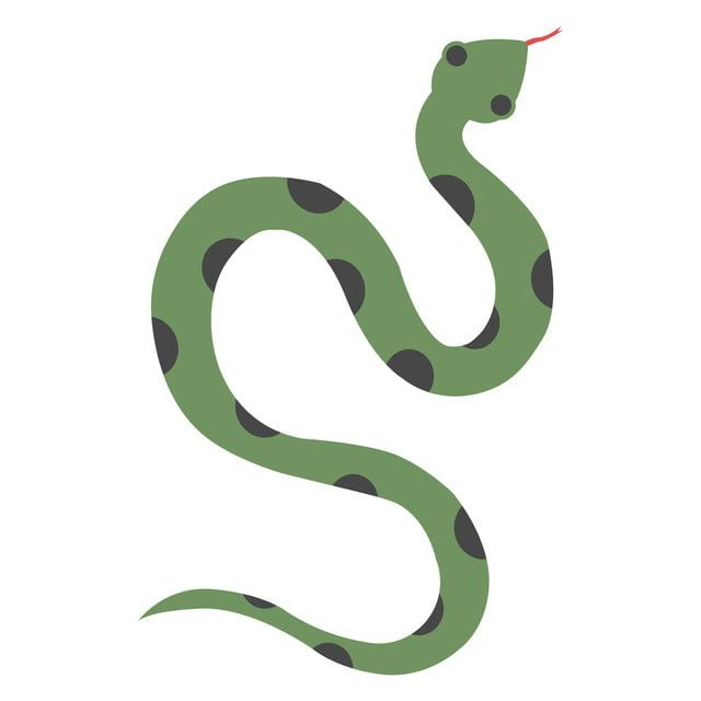 Green Snake Illustration Vector On White Background Snake Clipart Snake Vector Png And Vector With Transparent Background For Free Download Snake Illustration Green Snake Snake Painting