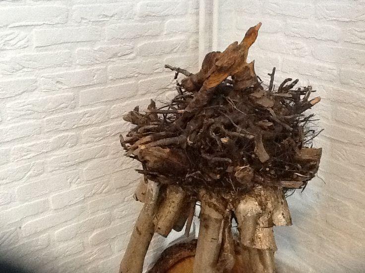 Op de kop ;wortelstelsel als nest