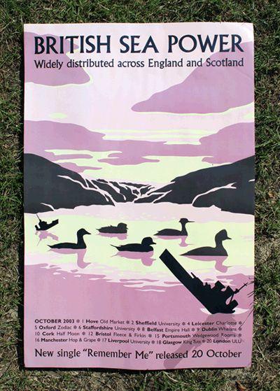 Ducks & Battleships Poster