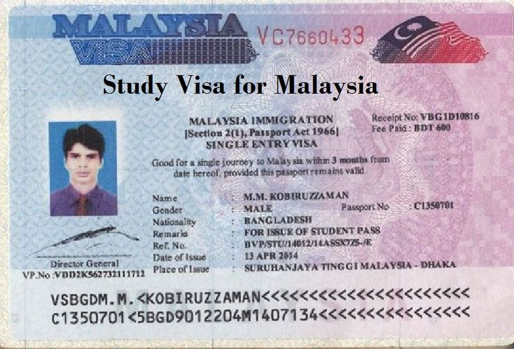 How To Check Online Visa Status Of Malaysia 2020 Youtube